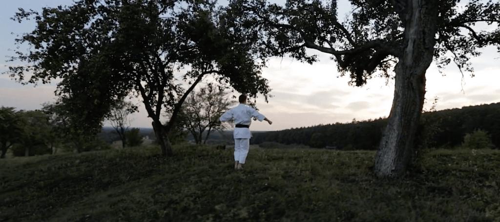 Dojo – The beginning of a journey